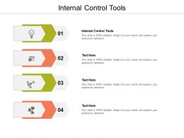 Internal Control Tools Ppt Powerpoint Presentation Pictures Objects Cpb