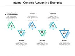 Internal Controls Accounting Examples Ppt Powerpoint Presentation Structure Cpb