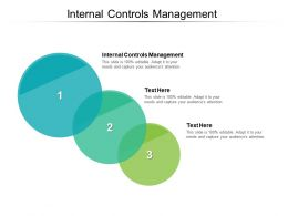 Internal Controls Management Ppt Powerpoint Presentation Summary Example Cpb