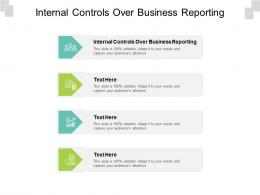 Internal Controls Over Business Reporting Ppt Powerpoint Presentation Portfolio Professional Cpb