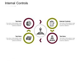 Internal Controls Ppt Powerpoint Presentation Professional Portfolio Cpb