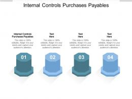 Internal Controls Purchases Payables Ppt Powerpoint Presentation Gallery Visuals Cpb