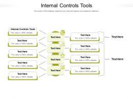 Internal Controls Tools Ppt Powerpoint Presentation Portfolio Example File Cpb