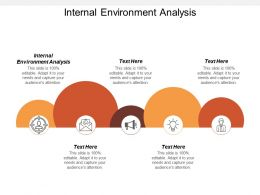 Internal Environment Analysis Ppt Powerpoint Presentation Gallery Examples Cpb