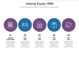 Internal Equity HRM Ppt Powerpoint Presentation Show Model Cpb
