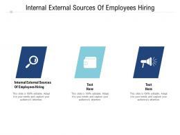 Internal External Sources Of Employees Hiring Ppt Powerpoint Presentation Design Ideas Cpb