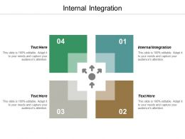 Internal Integration Ppt Powerpoint Presentation Infographic Template Inspiration Cpb