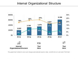 Internal Organizational Structure Ppt Powerpoint Presentation Portfolio Deck Cpb