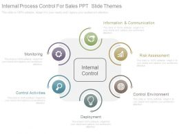 Internal Process Control For Sales Ppt Slide Themes