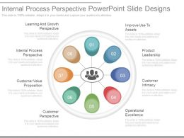 Internal Process Perspective Powerpoint Slide Designs