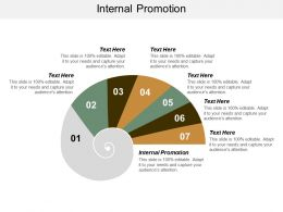 Internal Promotion Ppt Powerpoint Presentation Slides Show Cpb