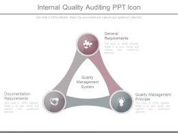 Internal Quality Auditing Ppt Icon