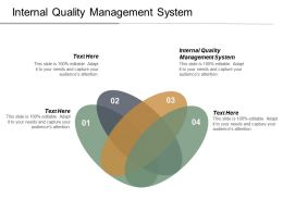 Internal Quality Management System Ppt Powerpoint Presentation Infographic Template Graphics Cpb