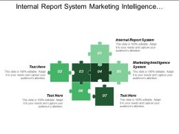 Internal Report System Marketing Intelligence System Marketing Environment