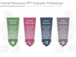 Internal Resources Ppt Examples Professional