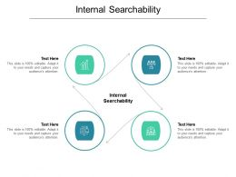 Internal Searchability Ppt Powerpoint Presentation Infographic Template Outfit Cpb