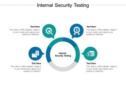 Internal Security Testing Ppt Powerpoint Presentation Outline Cpb