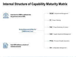 Internal Structure Of Capability Maturity Matrix Ppt Visual Aids