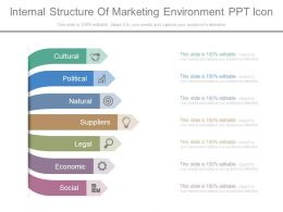 Internal Structure Of Marketing Environment Ppt Icon