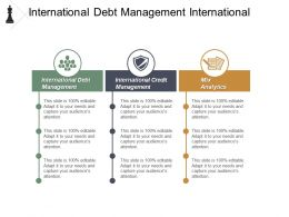 International Debt Management International Credit Management Mix Analytics Cpb