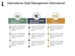 International Debt Management International Credit Management Mix Analytics Cpb