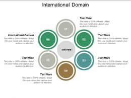 International Domain Ppt Powerpoint Presentation Portfolio Samples Cpb