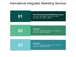 International Integrated Marketing Services Ppt Powerpoint Presentation Styles Example Cpb