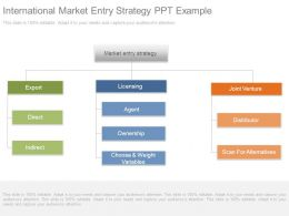 International Market Entry Strategy Ppt Example