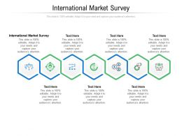 International Market Survey Ppt Powerpoint Presentation Icon Layout Cpb