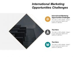 International Marketing Opportunities Challenges Ppt Powerpoint Presentation Inspiration Pictures Cpb