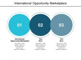 International Opportunity Marketplace Ppt Powerpoint Presentation Layouts Example Cpb