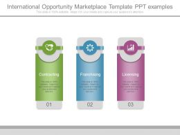 International Opportunity Marketplace Template Ppt Examples
