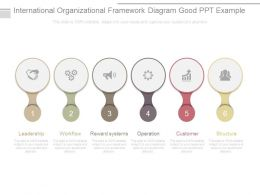 International Organizational Framework Diagram Good Ppt Example