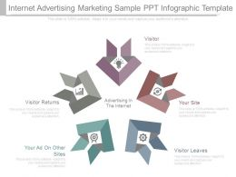 Internet Advertising Marketing Sample Ppt Infographic Template