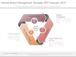 Internet Brand Management Template Ppt Example 2015