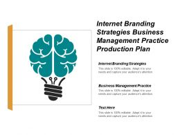 Internet Branding Strategies Business Management Practice Production Plan Cpb