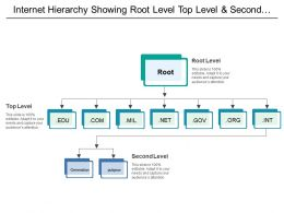 Internet Hierarchy Showing Root Level Top Level And Second Level