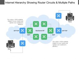 Internet Hierarchy Showing Router Circuits And Multiple Paths
