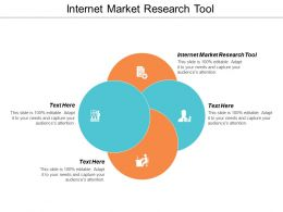 Internet Market Research Tool Ppt Powerpoint Presentation Visuals Cpb