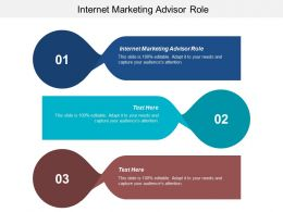 Internet Marketing Advisor Role Ppt Powerpoint Presentation Icon Example Introduction Cpb