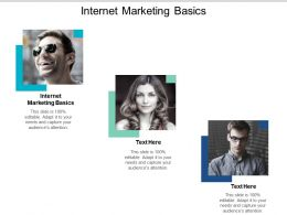 Internet Marketing Basics Ppt Powerpoint Presentation Outline Example Introduction Cpb