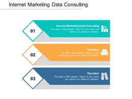 Internet Marketing Data Consulting Ppt Powerpoint Presentation Portfolio Microsoft Cpb