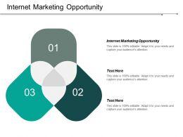 Internet Marketing Opportunity Ppt Powerpoint Presentation Portfolio Designs Download Cpb