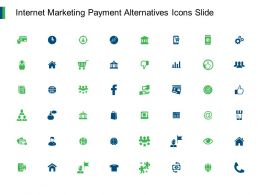 Internet Marketing Payment Alternatives Icons Slide Team I210 Ppt Powerpoint Presentation