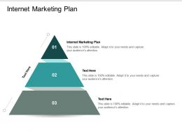 Internet Marketing Plan Ppt Powerpoint Presentation Infographic Template Examples Cpb