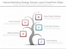 Internet Marketing Strategy Sample Layout Powerpoint Slides