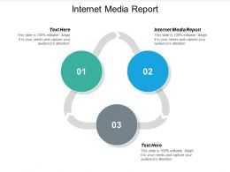 Internet Media Report Ppt Powerpoint Presentation Topics Cpb