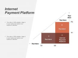 Internet Payment Platform Ppt Powerpoint Presentation Infographic Template Graphics Cpb
