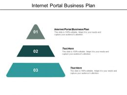 Internet Portal Business Plan Ppt Powerpoint Presentation Model Picture Cpb