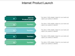 Internet Product Launch Ppt Powerpoint Presentation Gallery Example File Cpb